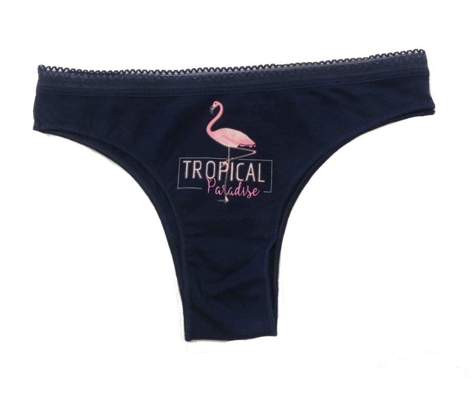 Γυναικείο-Σλιπάκι-Brazilian-TRES-CHIC-Flamingo-Μπλε-με-δαντέλα-scaled-1.jpg