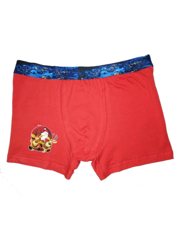 boxer xmas2